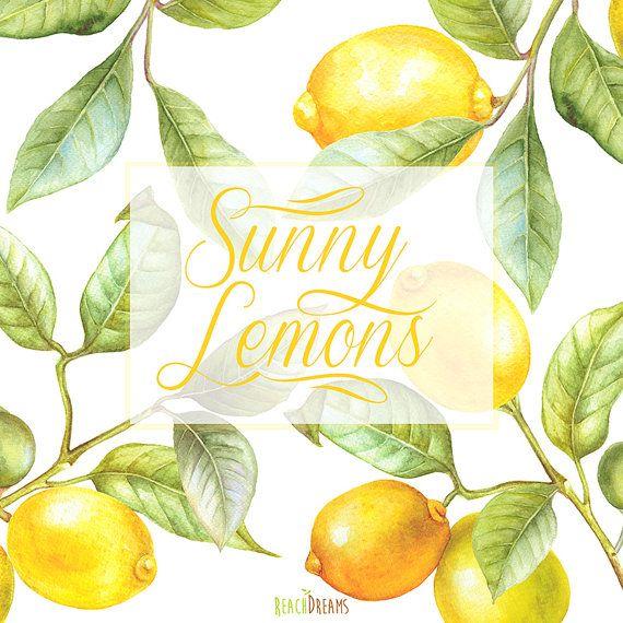 Lemon Watercolor Clipart. Hand painting fruit, Lime, kitchen, Food ...