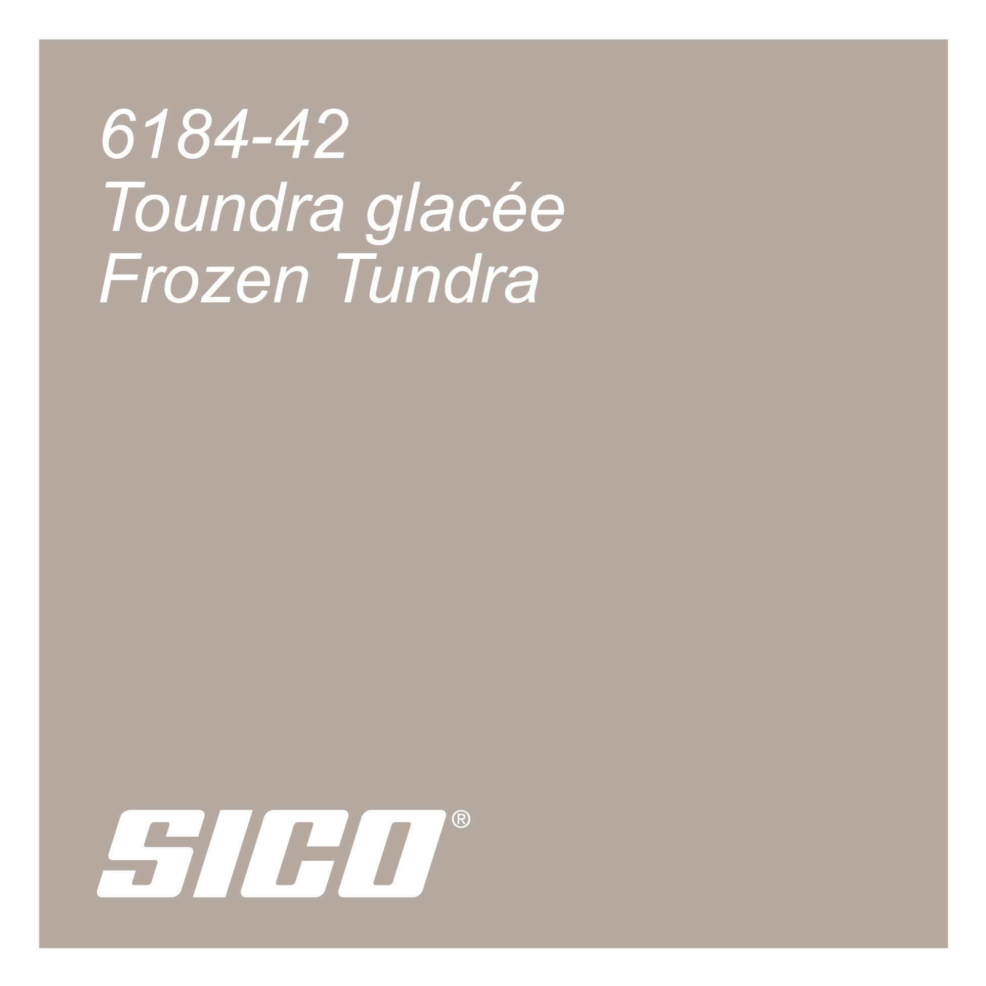 Frozen Tundra Paint Colour By Sico Paints Toundra Glacee