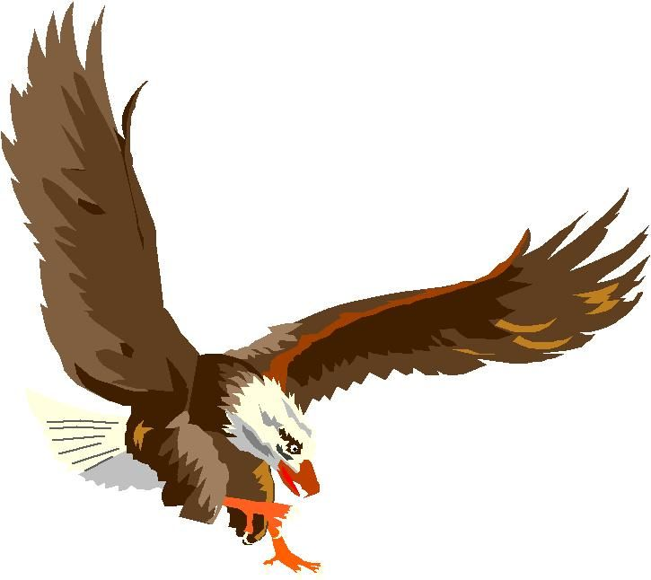 Aguilas para dibujar a color - Imagui | Eagle tattoos | Pinterest ...