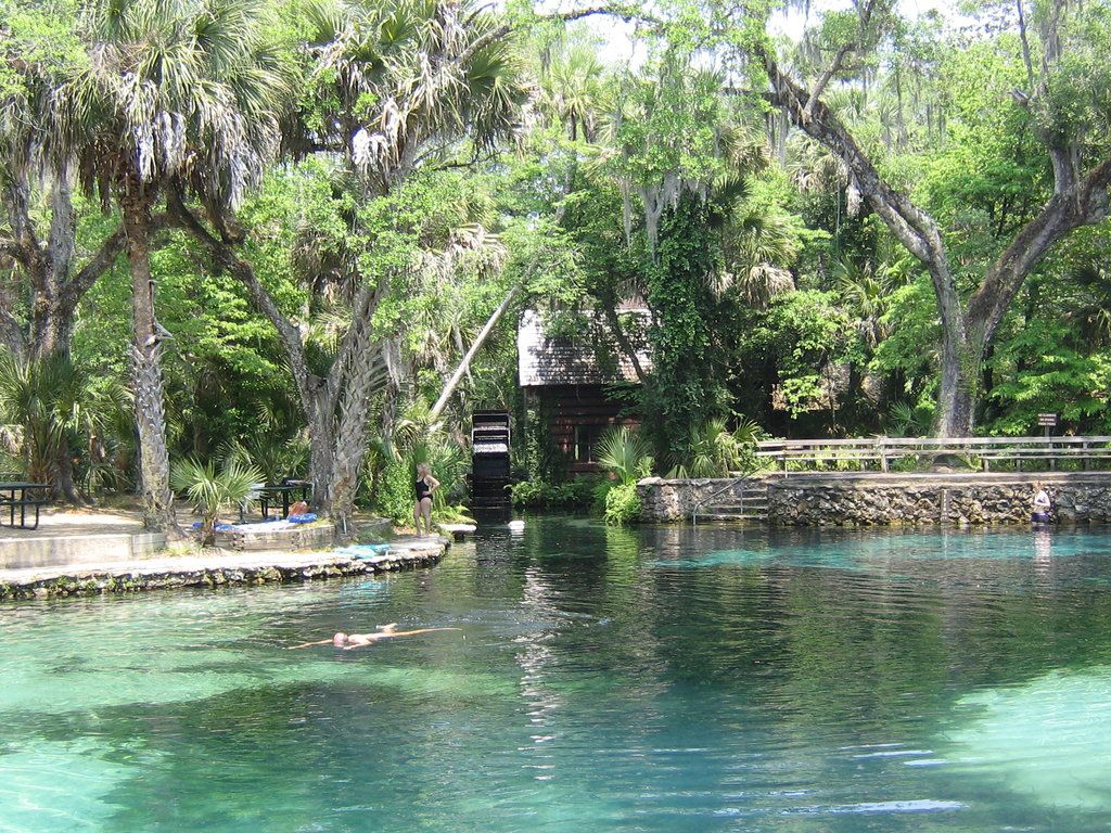 Florida camping springs juniper spring natural pure fresh water pool my home is paradise for What is a freshwater swimming pool