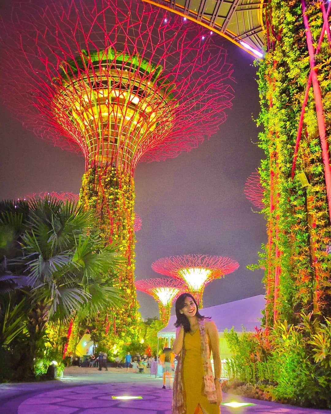 229057b03b7988b2c4642eb1aefc81f1 - Gardens By The Bay Timings Light Show