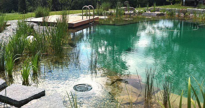 schwimmteich pool in 2018 pinterest. Black Bedroom Furniture Sets. Home Design Ideas