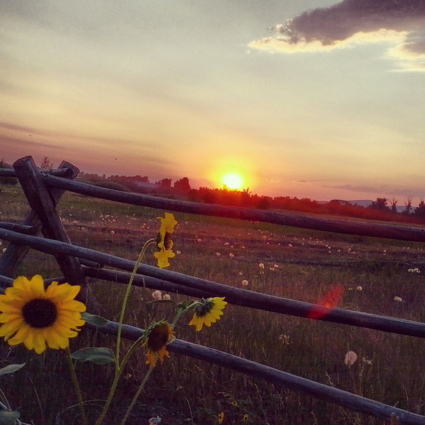 Sunset in Rexburg Idaho