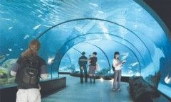 Jerusalem Biblical Aquarium