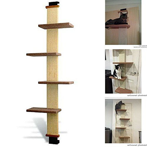 Multi Level Cat Climbers Ebook How To Train Your By Rio Center Trees Scratcher Over The Door Tree Kitty Climber Ultimate Scratching