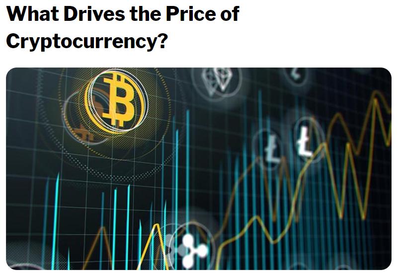 Bitcoin investment witz