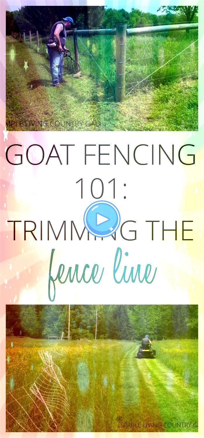 the fence line is an important chore that needs to be done to ensure yo My favorite podcasts lately plus 7 handpicked episodes to get you started 100 zara woman winter co...