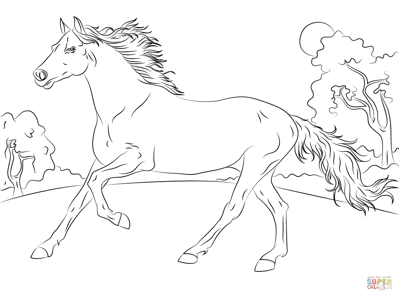 Horse Galloping Coloring Sheet Concept