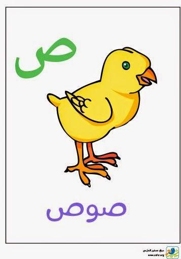 لعبة صورة وكلمة تطبيق لتعليم العربية للأطفال Free Flash Game Free Game For Kids Education العاب مجانية الع Learn Arabic Language Learning Arabic Arabic Lessons