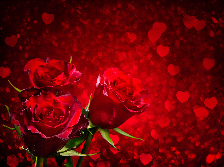 Wallpaper Phone Falling Snowflakes Pin By Bono On Kartki Okolicznosciowe Red Roses Heart