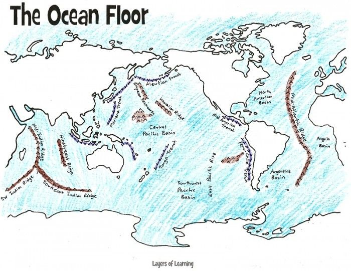 Mapping the Ocean Floor Freebie and Unit Study | Geography Ideas and on lake floor mapping, deep sea mapping, ocean mapping activity,