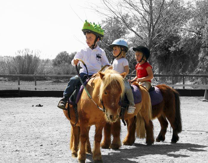Trenecito de ponies