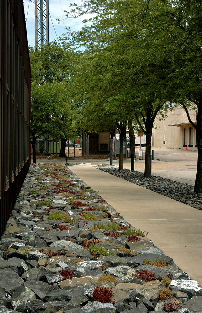 Excellent use of ugly rock to create a back of sidewalk for Design von zierpflanzen