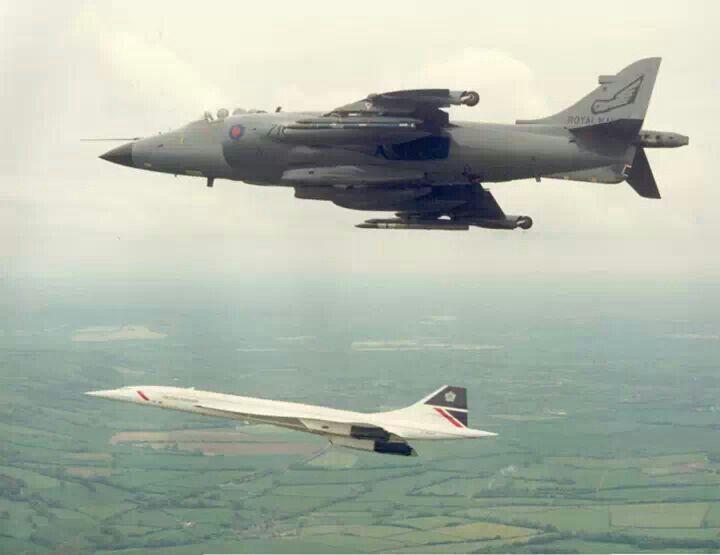 Escort Concorden