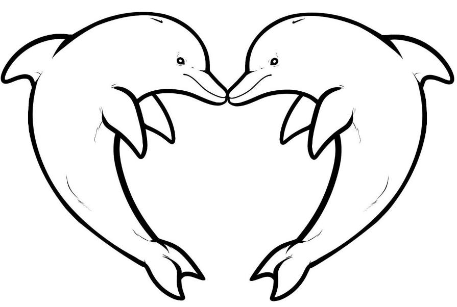 delfin zeichnen f kinder  malvorlagen