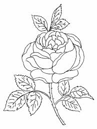 Kolorowanki Dla Doroslych Kwiaty Google Search Flower Coloring Pages Rose Coloring Pages Garden Coloring Pages