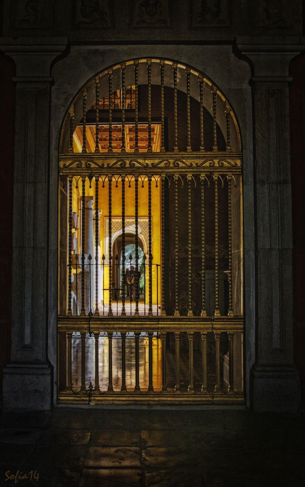 Jaulas de oro by Sofía Serra on 500px
