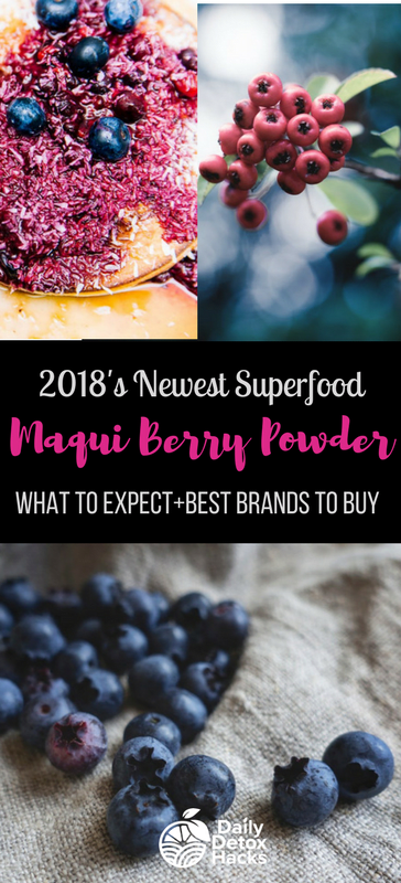 Maqui Berry Powder Benefits Uses And Where To Buy Berries