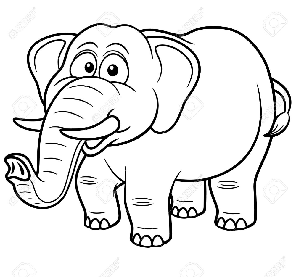 - Stock Vector Elephant Coloring Page, Lion Coloring Pages