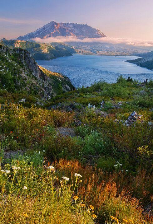 St. Helens looms beyond a silent Spirit Lake