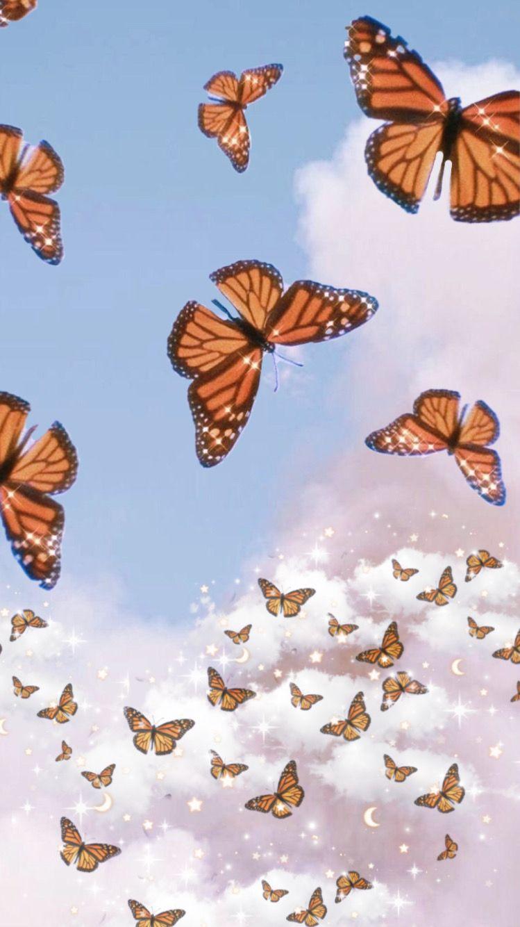 Butterfly Sky In 2020 Butterfly Wallpaper Iphone Butterfly Wallpaper Cute Desktop Wallpaper
