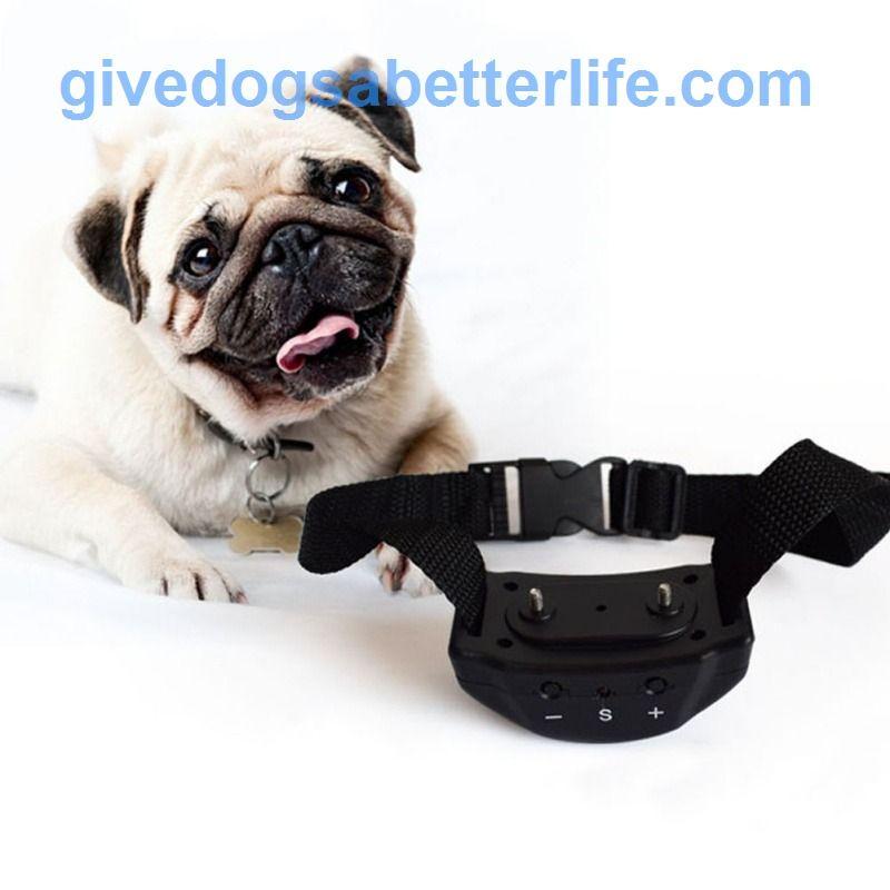 Hot Sale Anti Bark Remote Electric Shock Vibration Free Shipping