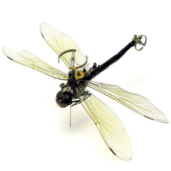 Unique Steampunk Insects ❤ liked on Polyvore featuring steam punk