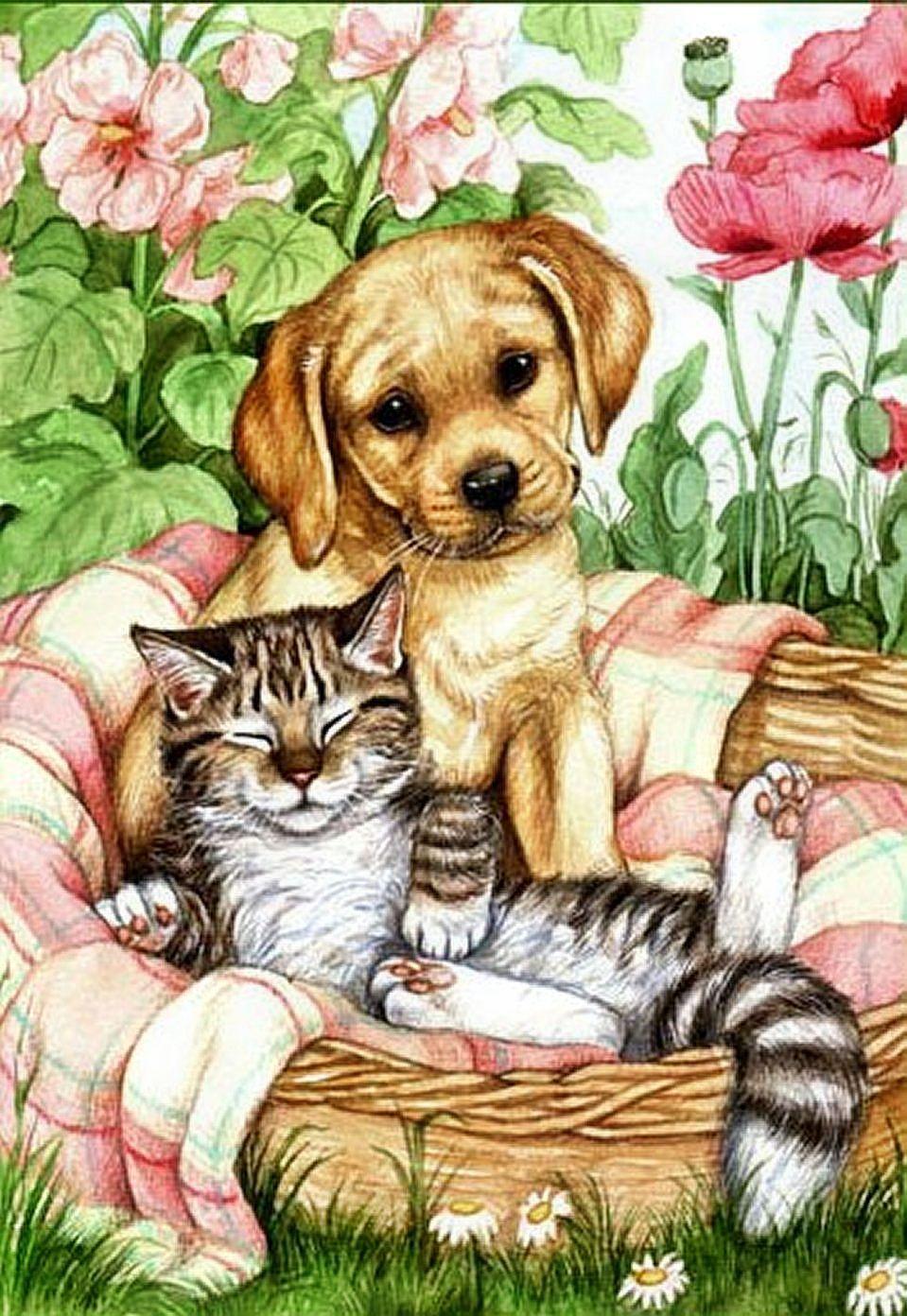 Открытка котенок с щенком, звезды