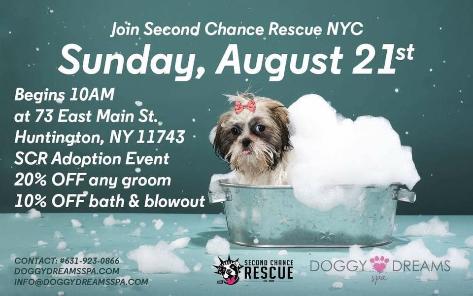 COME & JOIN US THIS SUNDAY, August 21st, 2016 - SECOND CHANCE RESCUE NYC…