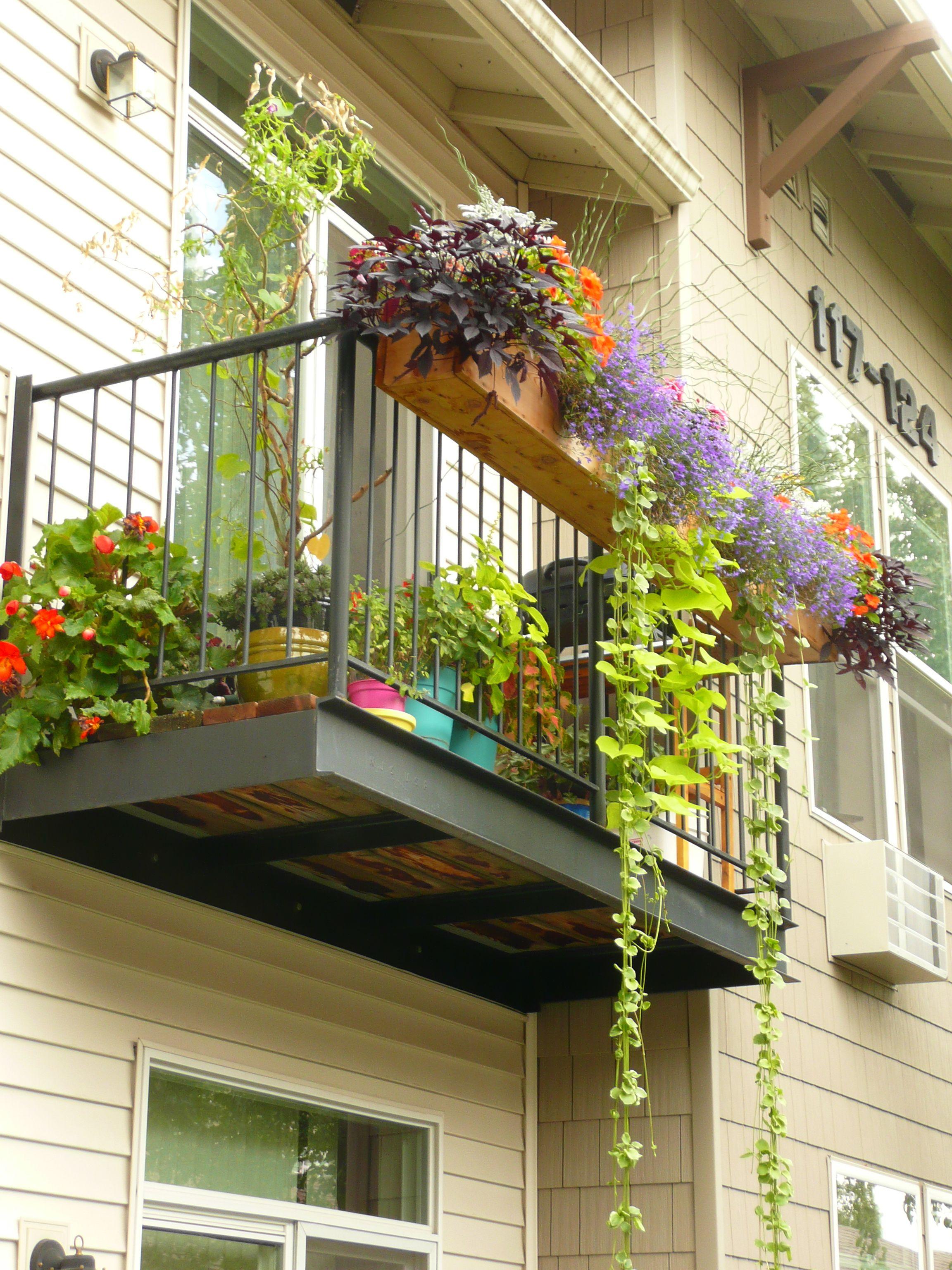 Our apartment patio deck last summer. DIY 7' cedar planter ... on Apartment Backyard Patio Ideas  id=50847