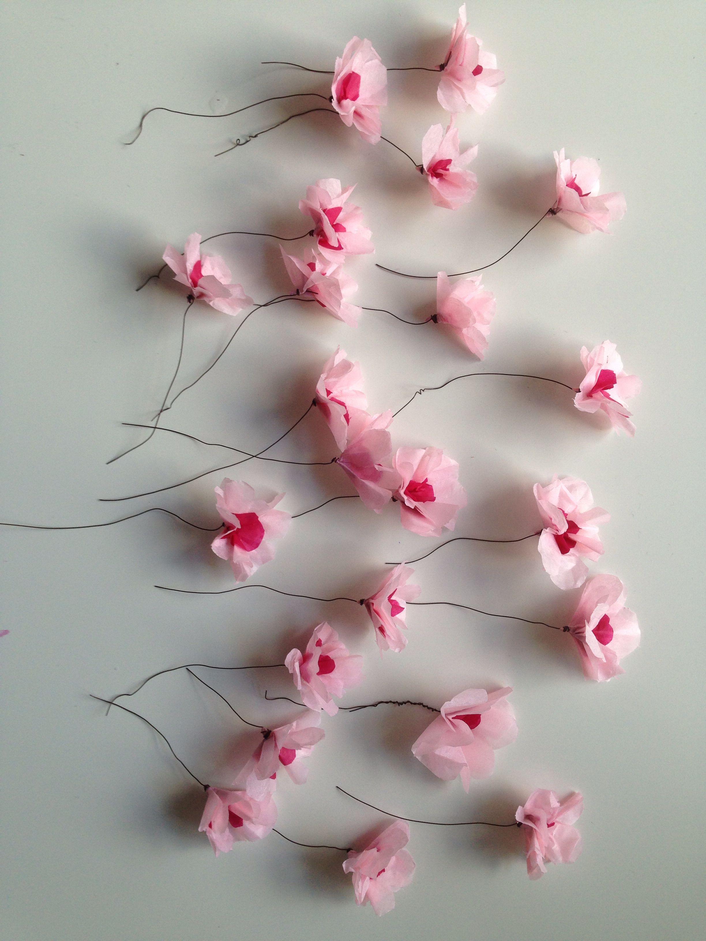Kirsebærblomster i silkepapir