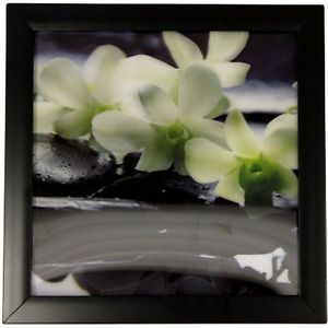 HD 3D Iconic Flower Print - Spa Orchid