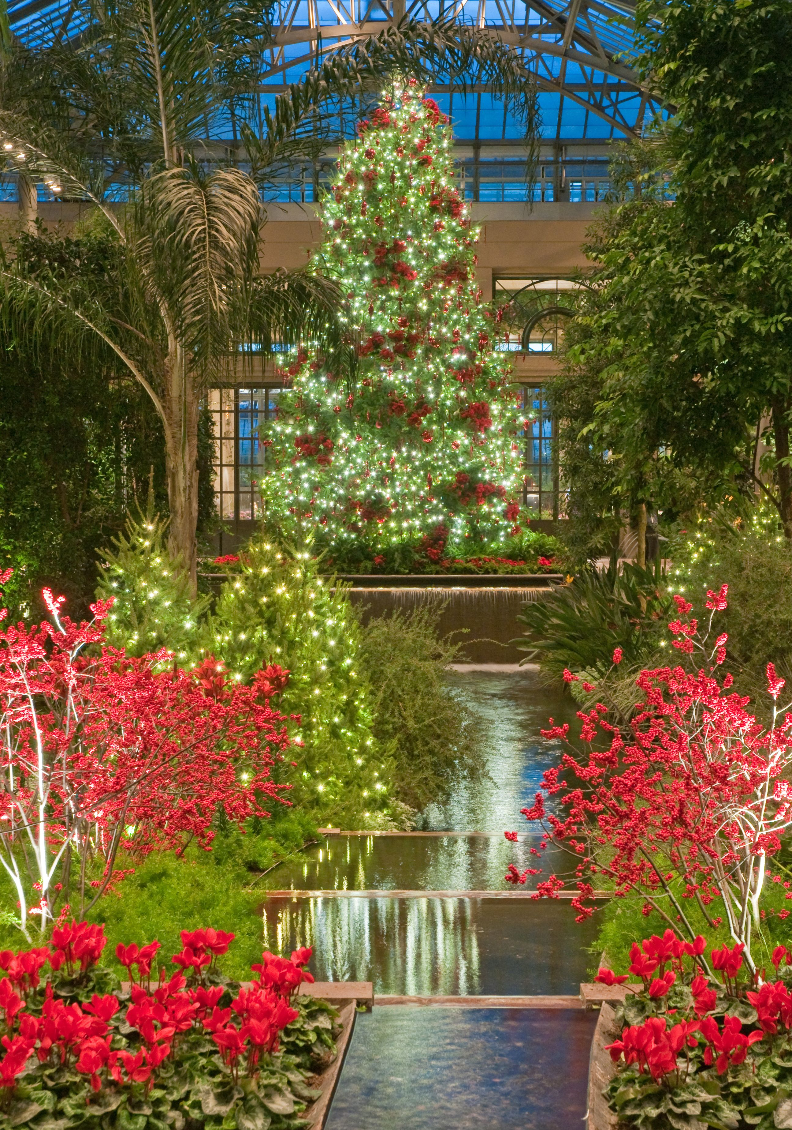Longwood Gardens at Christmas! | 2013 Single day tours | Pinterest ...