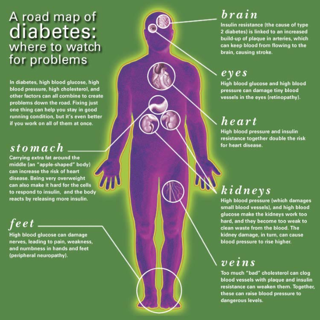 what causes diabetes in human body