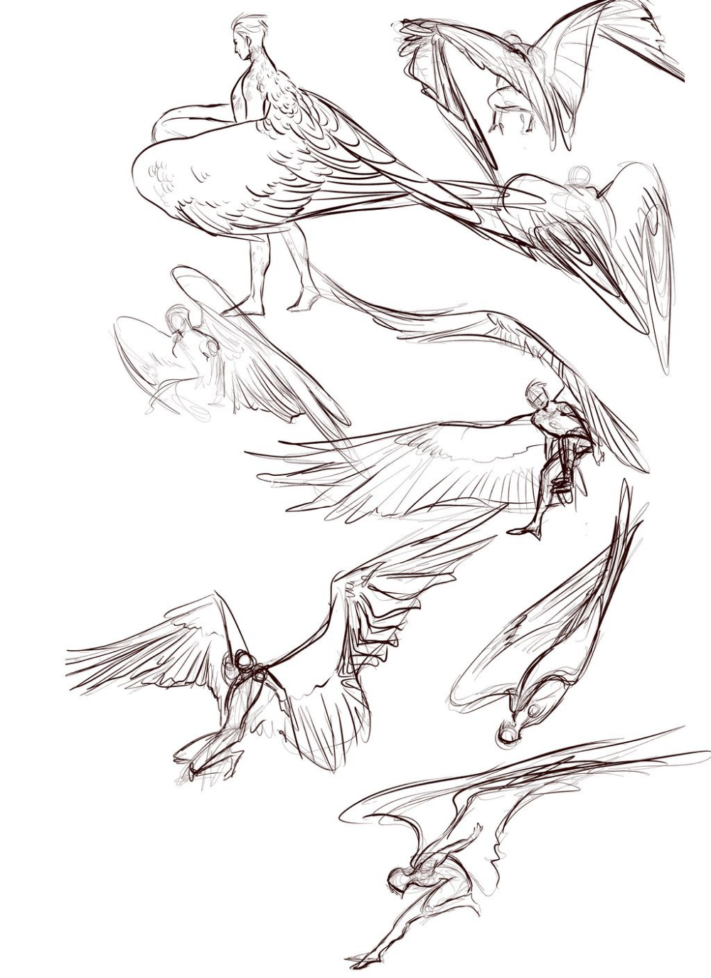 Wingy Doodles By Nebluus On Deviantart In 2020 Art Reference Photos Wings Drawing Wings Art