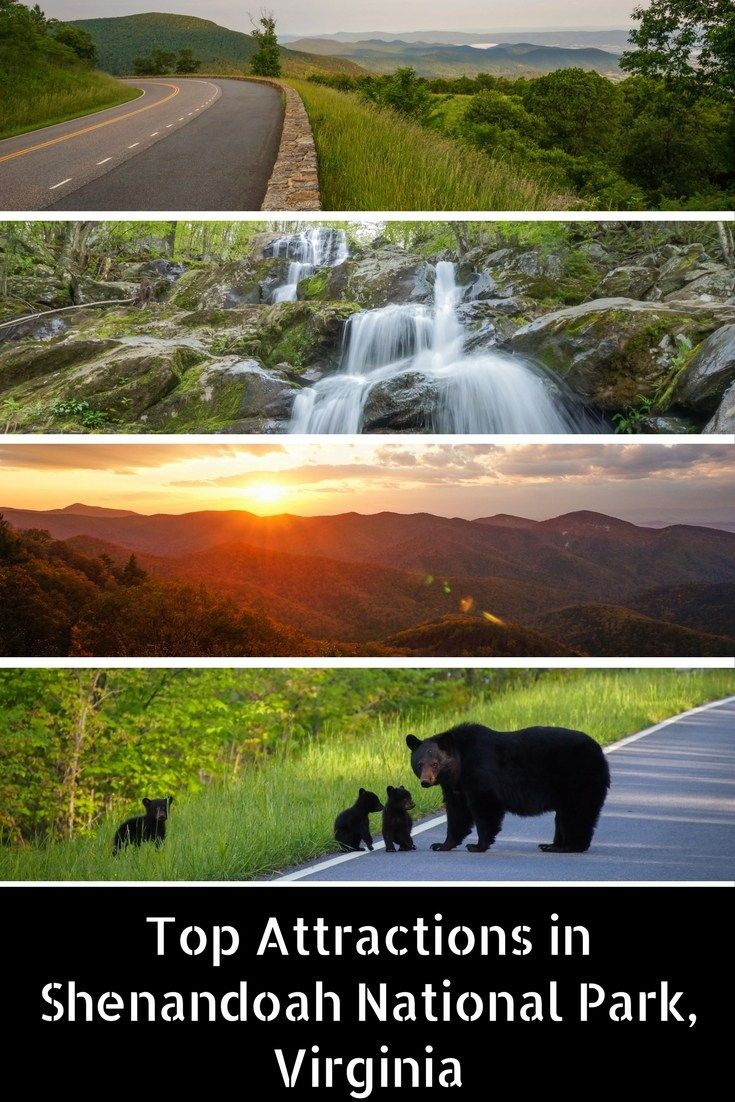 5 Attractions In Shenandoah National Park Virginia
