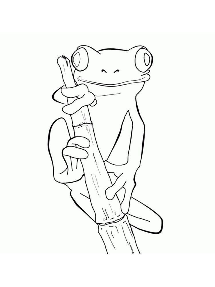 Frogs Colouring Pages Below Is A Collection Of Frog Coloring Page Which You Can Download For Free Have Frog Coloring Pages Frog Drawing Animal Coloring Pages