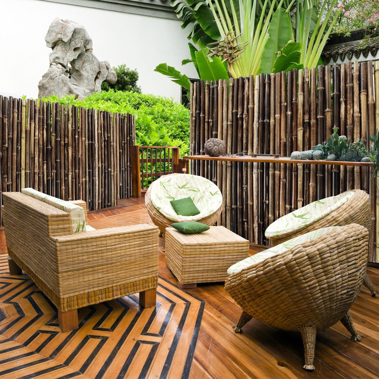 bambuszaun schwarz 3 gr en phyllostachys nigra. Black Bedroom Furniture Sets. Home Design Ideas