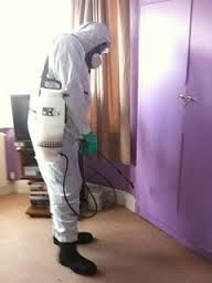 Gilbert Bed Bug Treatment Protecting Homeowners from Infestation