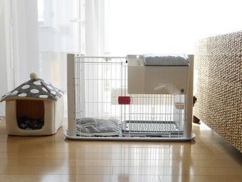 北欧 シンプルスタイルの部屋で楽しむ 犬のいる暮らし キナリノ 犬 犬のケージアイデア 犬の部屋