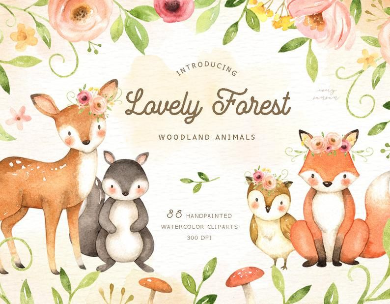 Lovely Forest Watercolor Clip Art Woodland Animals Kids Etsy Woodland Animals Clip Art Watercolor Clipart