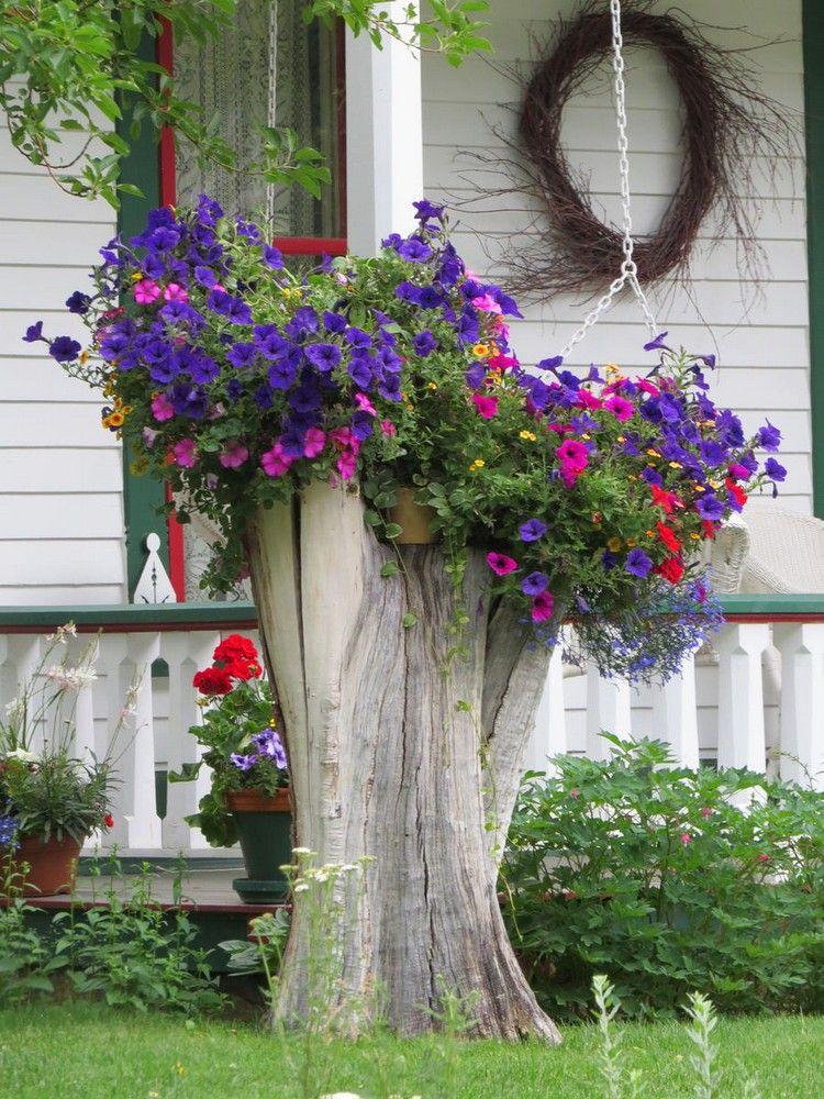 jardin d\'ornement - tronc d\'arbre décoré de suspensions de pétunias ...