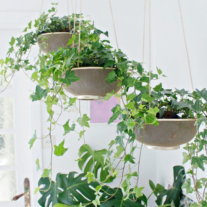 how to make a mason jar herb garden hello nest indoor on indoor herb garden diy wall mason jars id=98193