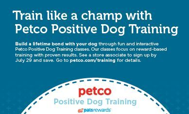 20 Off Petco Training Classes Or Packages Training Classes