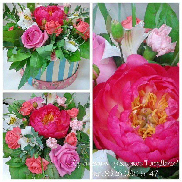 Доставка цветов полежаевская домашние и искусственные цветы купить оптом в днепропетровске