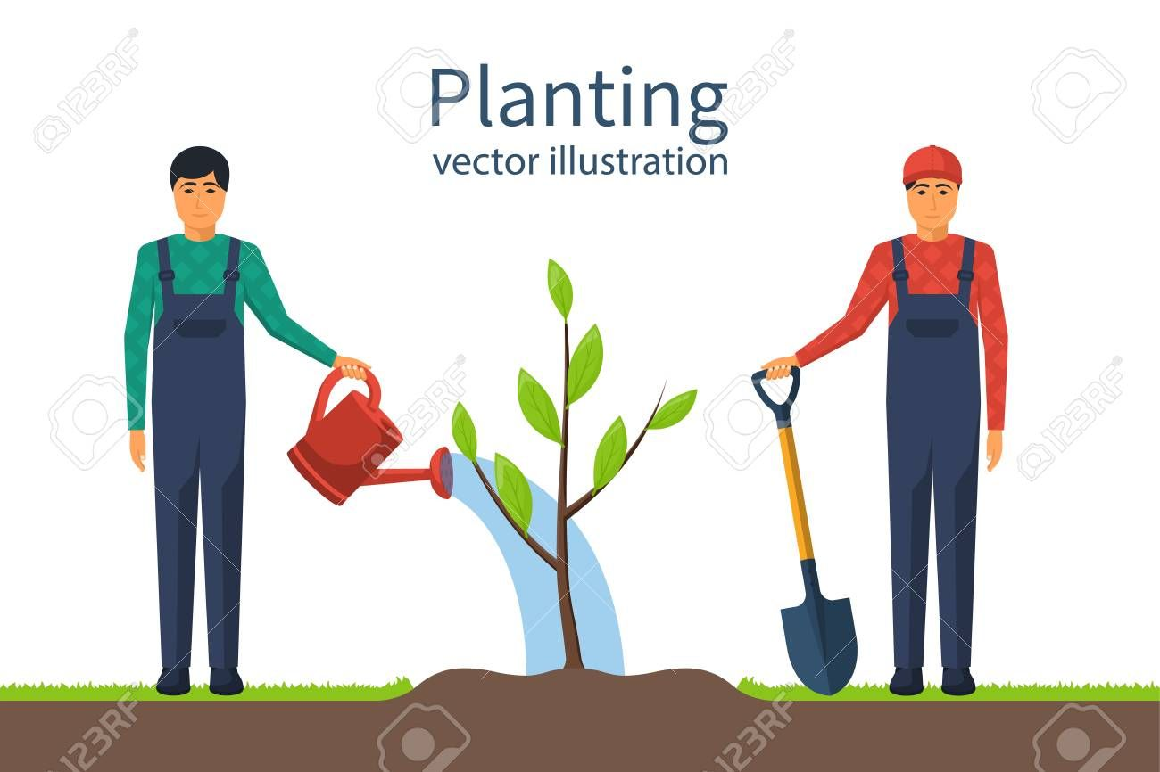 Man Watering Plants Stock Illustrations – 801 Man Watering Plants Stock  Illustrations, Vectors & Clipart - Dreamstime