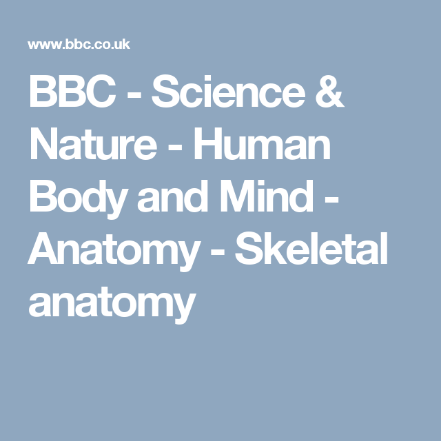 BBC - Science & Nature - Human Body and Mind - Anatomy - Skeletal ...