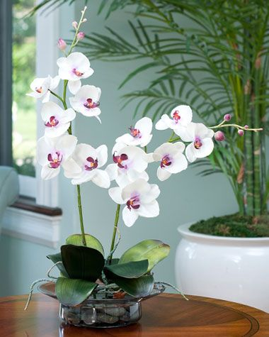 Cream Fuchsia Phalaenopsis Orchid In Elegant Glass Bowl Silk Orchids Silk Orchids Arrangements Artificial Orchids