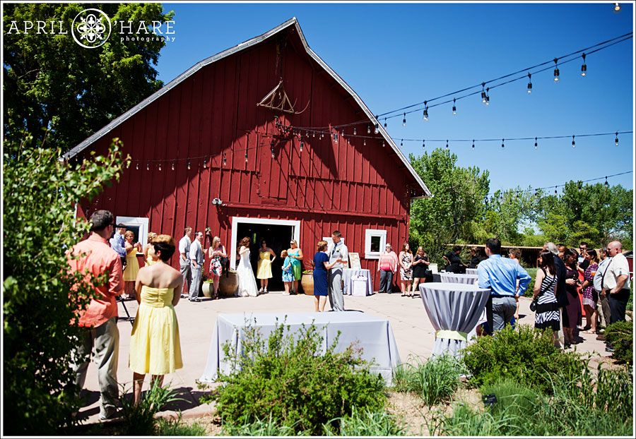 A daytime wedding reception at Chatfield Botanic Gardens Wedding