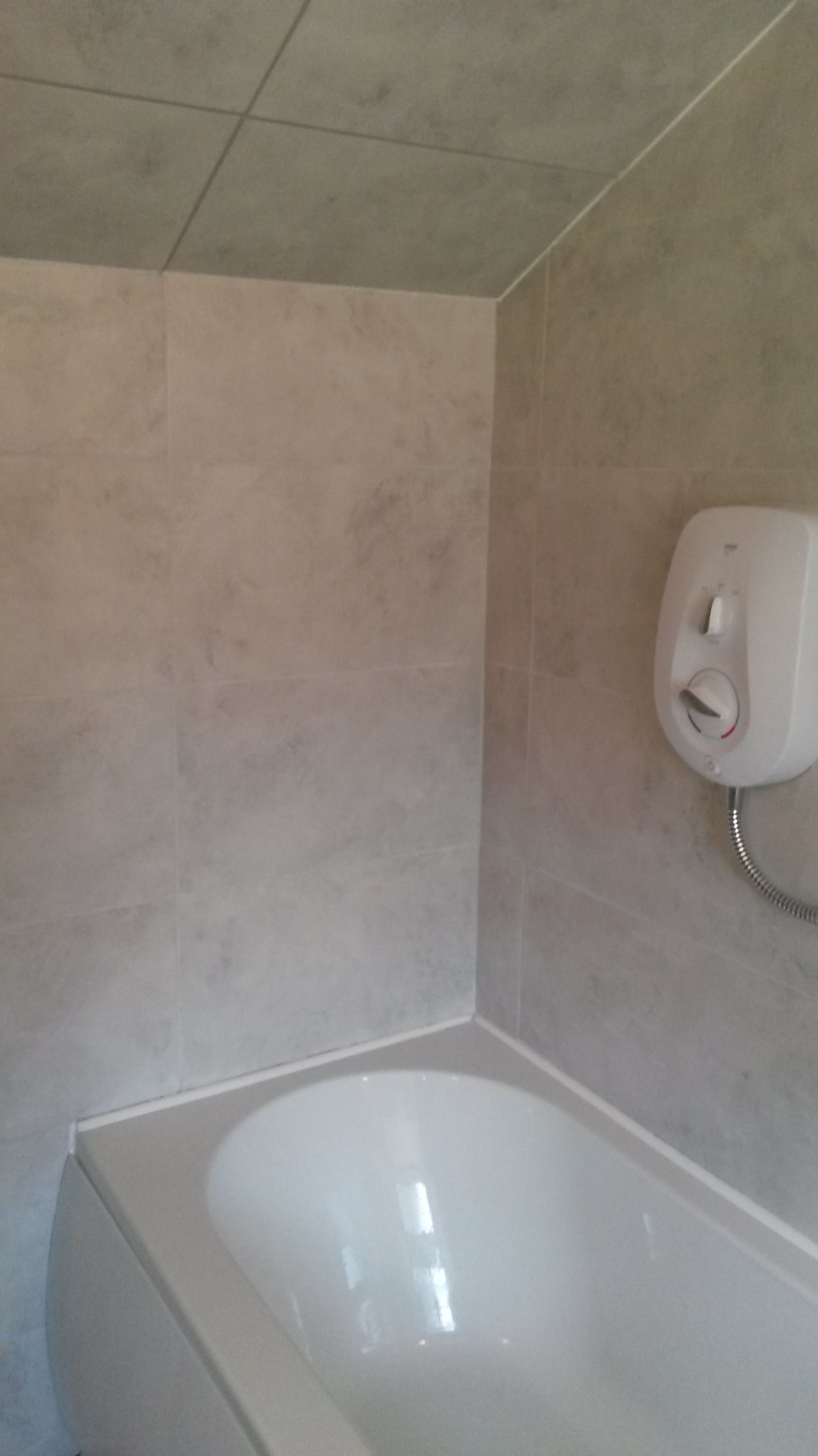 Bath and shower area